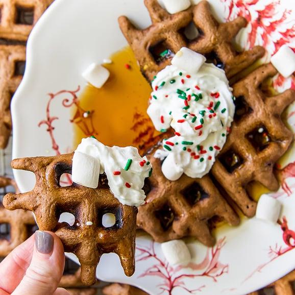 Hot Cocoa Waffles 2 (1 of 1)